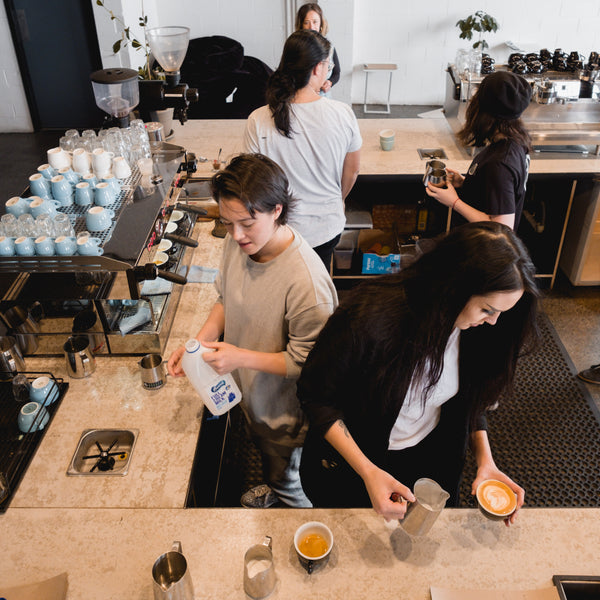 1 Day: Coffee Knowledge, Barista Path 1 and Latte art! - Proud Mary Coffee Melbourne