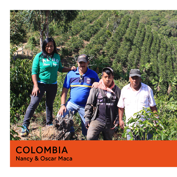 Colombia | Nancy & Oscar Maca | Gesha | Natural | Filter | 100g - Proud Mary Coffee Melbourne