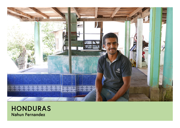 Honduras | Nahun Fernandez | Pacas | Anaerobic Washed 48/72hr | Filter | 250g