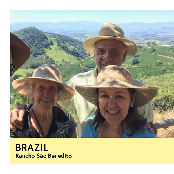 Brazil | Rancho São Benedito  | Yellow Bourbon | Natural | Filter | 250g - Proud Mary Coffee Melbourne