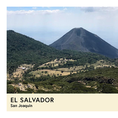 El Salvador | San Joaquin | Red Bourbon | Natural | Espresso | 250g