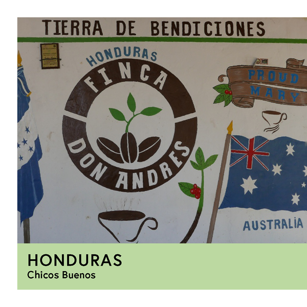 Honduras | Chicos Buenos | Pacas & Catuai | Washed | Espresso | 250g - Proud Mary Coffee Melbourne