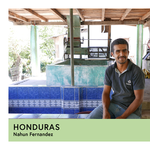 Honduras | Nahun Fernandez | Pacas | Anaerobic Washed 96hr | Espresso | 250g - Proud Mary Coffee Melbourne