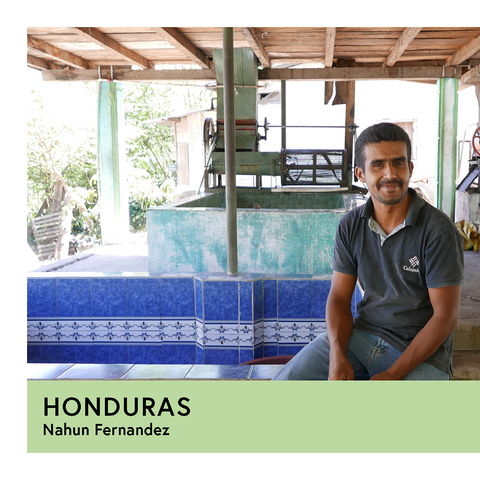 Honduras | Nahun Fernandez | Pacas | Anaerobic Washed 96hr | Filter | 250g