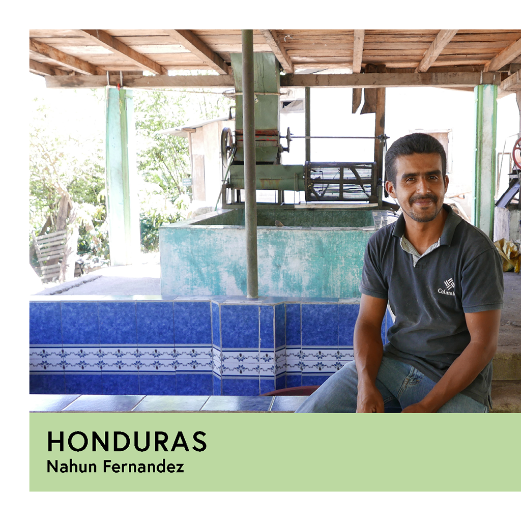 Honduras | Nahun Fernandez | Pacas | Anaerobic Washed 48/72hr | Espresso | 250g - Proud Mary Coffee Melbourne