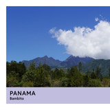 Panama | Bambito | Geisha | Washed | Filter | 100g - Proud Mary Coffee Melbourne