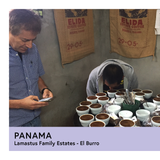 Panama | Lamastus Family Estates - El Burro | Geisha | Anaerobic Natural Slow Dry | Filter | 100g - Proud Mary Coffee Melbourne