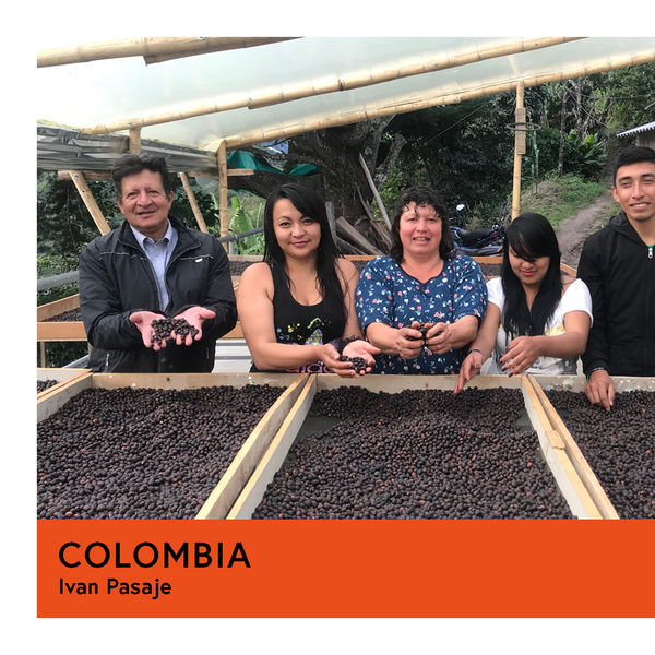 Colombia | Ivan Pasaje | Colombia | Natural | Filter | 250g - Proud Mary Coffee Melbourne