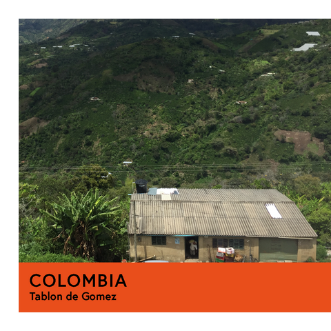 Colombia | Tablon de Gomez | Caturra & Castillo | Washed | Espresso | 250g