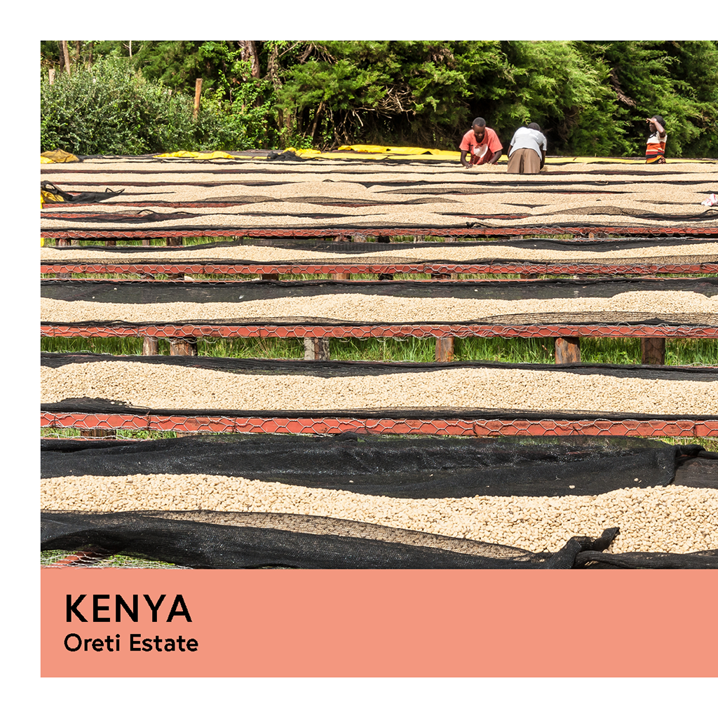 Kenya | Oreti Estate | SL28 & SL14 | Washed | Espresso | 200g - Proud Mary Coffee Melbourne