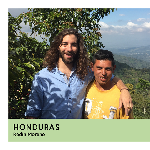 Honduras | Rodin Moreno | Pacas | Anaerobic Washed 48hr | Filter | 250g