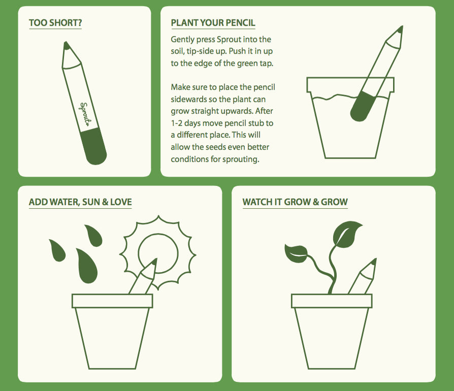 Sprout pencil planting instructions