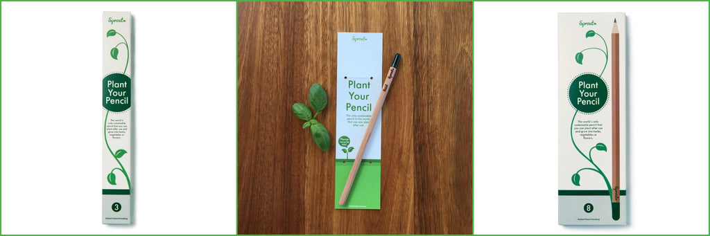 Sprout Pencils