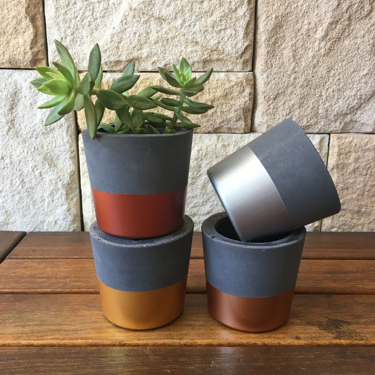Concrete Planter: Metallic + Charcoal