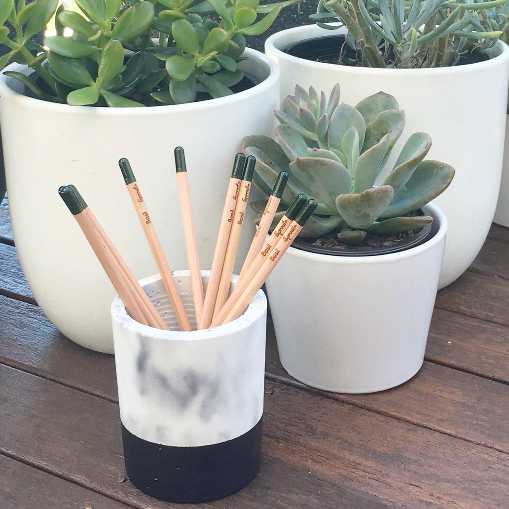 Concrete Planter: Marble with Sprout Pencils