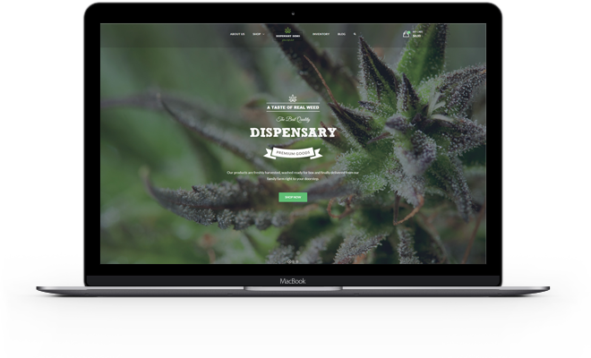 Website Design Cannabis
