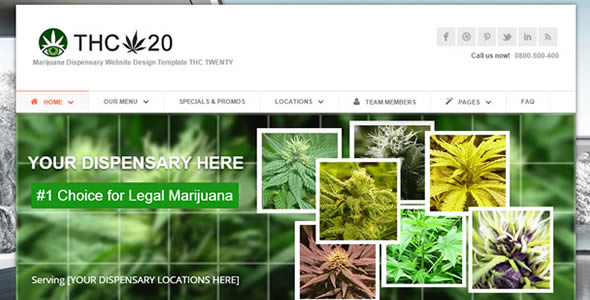 Website Design Dispensary