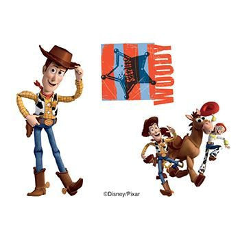 Woody Fake Tattoo Toy Story