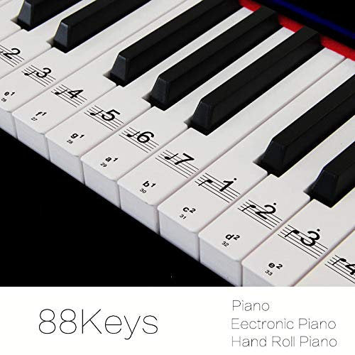 Piano Transparent stickers Keyboard