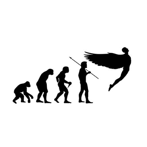 Evolution Temporary Tattoo
