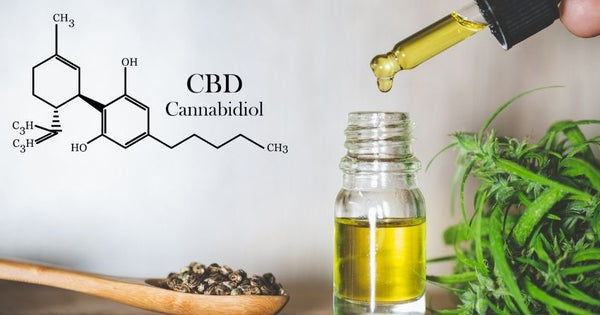 cbd improve neuro-inflammation and alzheimer's disease plaques in mice