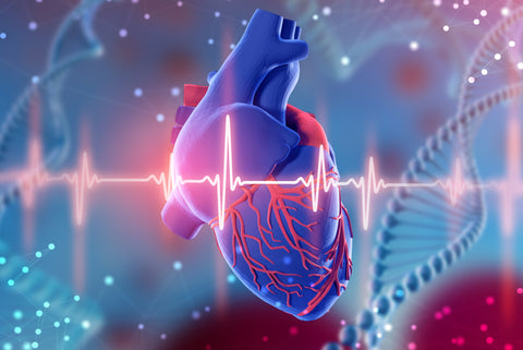 Heart disease is the leading cause of death among men and women in the United States, killing one in four people every year, according to the Centers for Disease Control and Prevention (CDC).