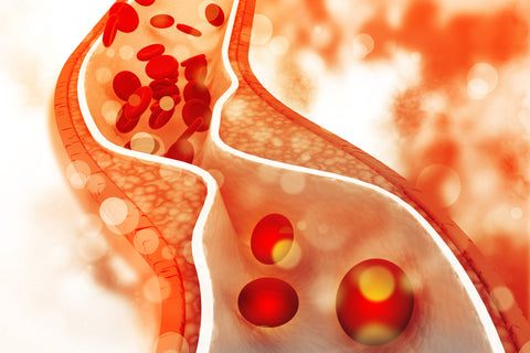 NMN has been found to reduce atherosclerosis and improve blood vessel health in animal studies.