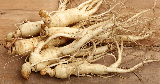 Ginseng root is only harvested every six years and makes an excellent adaptogenic tea.