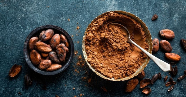 intake of cocoa flavanols — plant-based, health-supporting antioxidants found in cocoa — may impact age-related memory function in normal cognitive aging