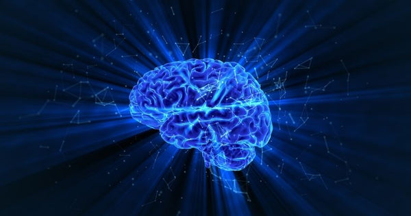 Brain health is a significant part of aging