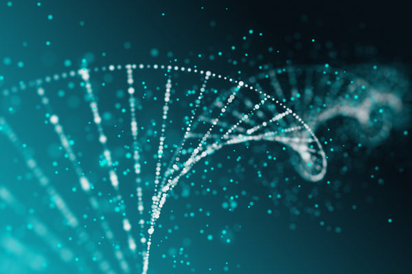 Biological aging has several hallmarks, including shifts in the preservation of our genetic material, or what's called genetic stability.