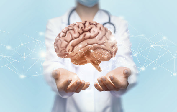doctor holding brain; processed meat impairs brain health