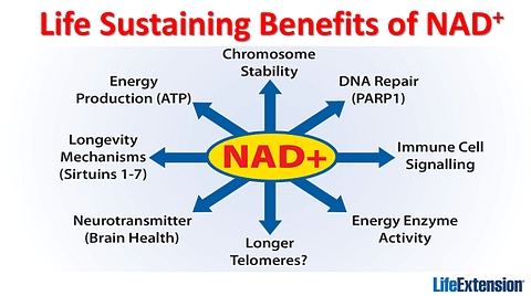Life Sustaining Benefits of NAD+