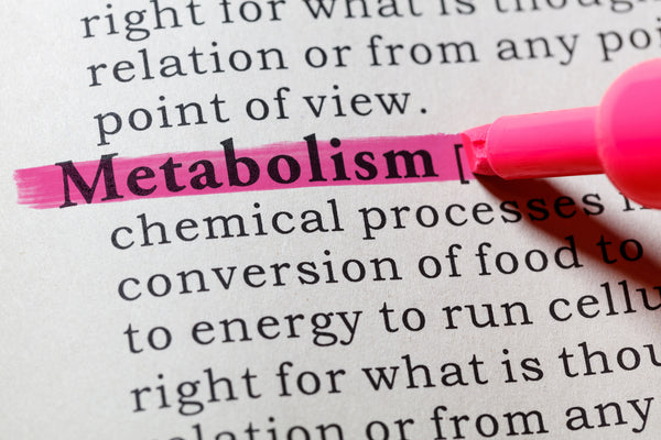 NAD+ is at the core of metabolism