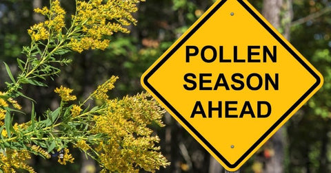 Pollen is the most common fall allergy trigger.