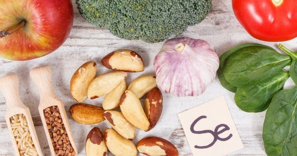 The best dietary sources of selenium are Brazil nuts, tuna, shrimp, halibut, sardines, and organ meat