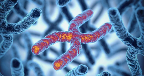 shorter telomeres are associated with an increased incidence of covid-19 disease