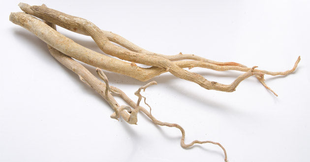 The root bark of the Tongkat ali tree is rich in bioactive phytonutrients.