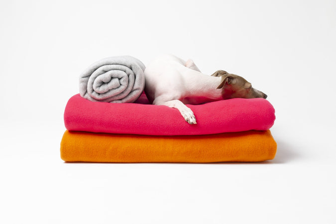 New for A/W 2019 – Double Fleece Dog Blankets in Wisp Grey, Hot Pink and Bright Orange