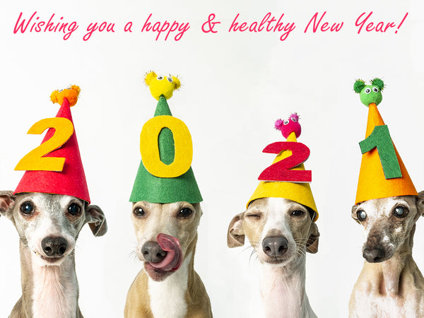 Wishing you a happy & healthy New Year
