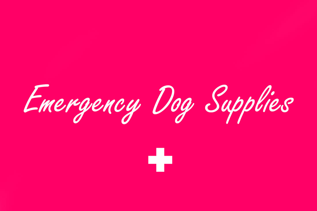 Emergency Dog Supplies now available