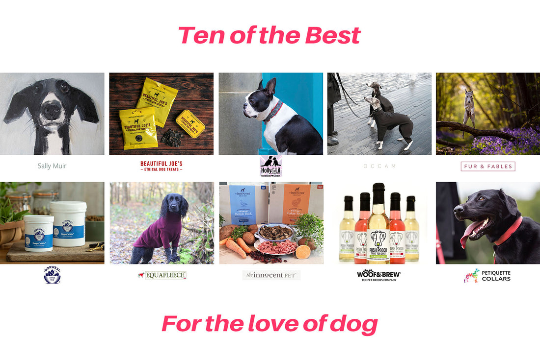 Ten of the Best - brands and people all for the love of dog