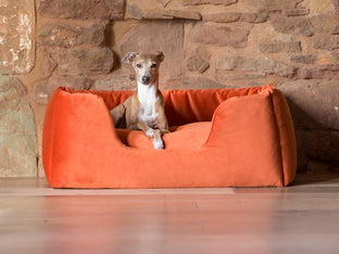 Deeply Dishy Luxury Dog Beds