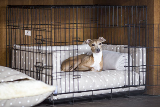 Bedding for Dog Crates