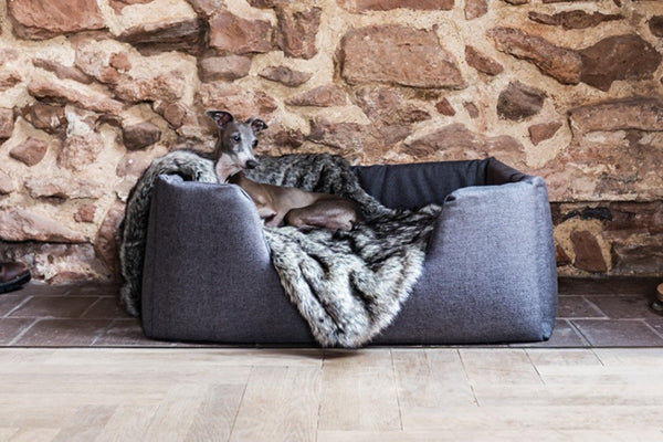 All Luxury Dog Beds & Blankets