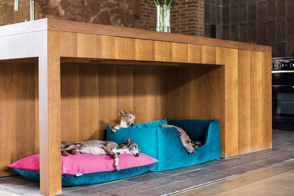 all luxury dog beds