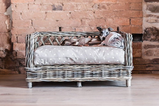 Dog Baskets, Bed Frames & Crate Bedding
