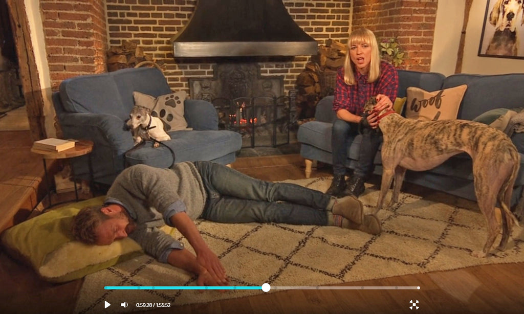 "Charley Chau Snuggle Bed ""on set"" for Britain's Top 100 Dogs Live"