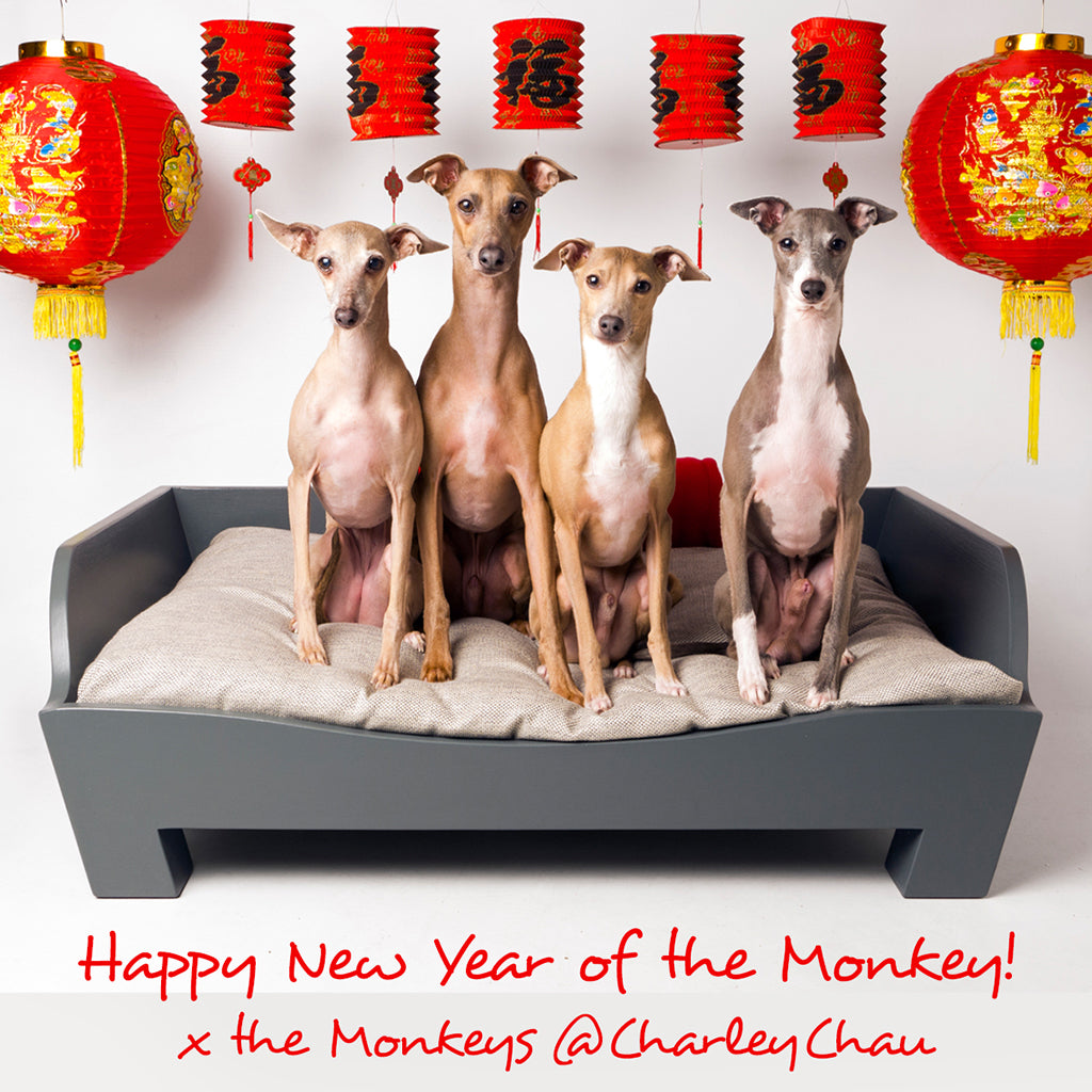 Happy Chinese New Year of the Monkey