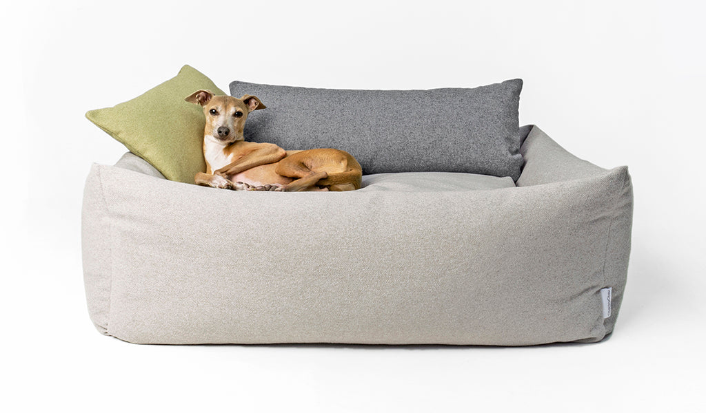 Charley Chau Bliss Bolster Bed in Pebble with Mini Bolster Pads in Lemongrass and Nimbus Grey